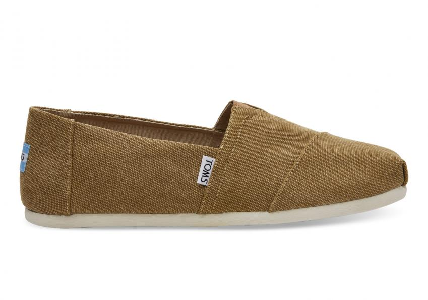 Herren Toms Schuhe – Toffee Washed Canvas Classics Toffee Washed